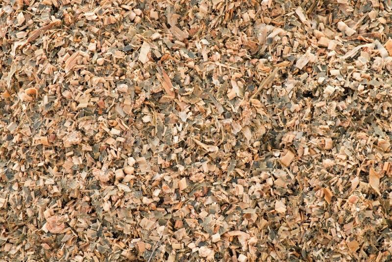 Havremajsensilage som malas som djur matning Avfalls från havre som beskjuter process arkivbilder