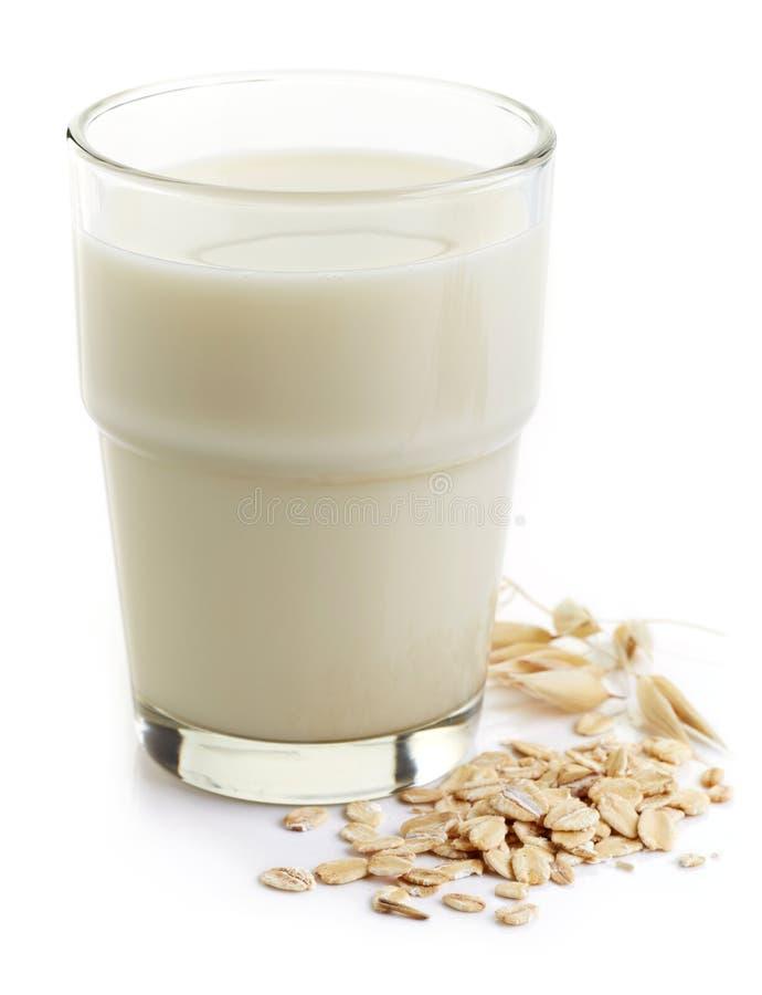 Havren mjölkar arkivbild