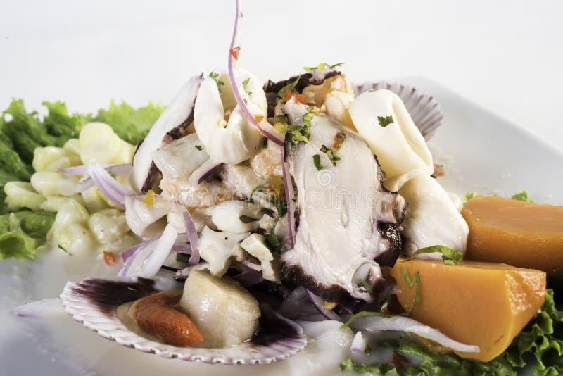 Havs- ceviche, typisk maträtt från Peru royaltyfria bilder