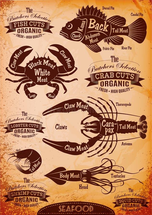 Havs- kadaver för vektordiagramsnitt royaltyfri illustrationer