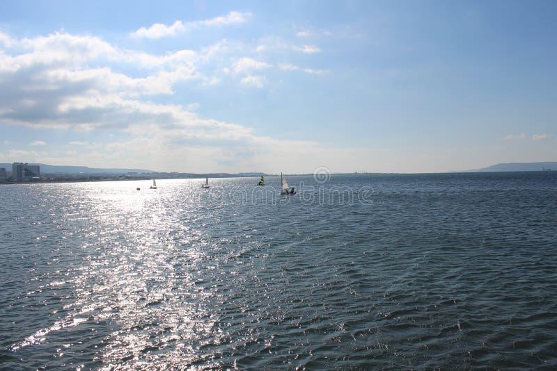 Havs- och stillhethimlar royaltyfria foton
