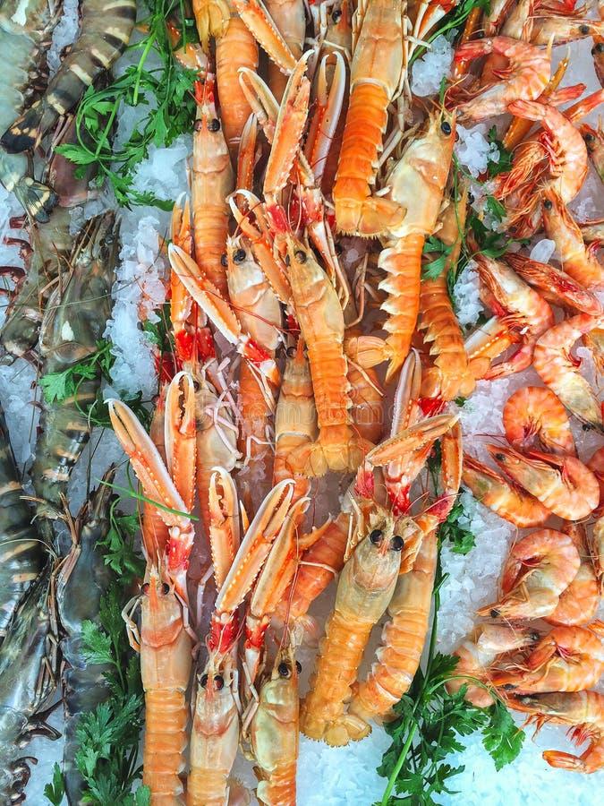 Havs- stall på en provencal marknad som presenterar rå tigerräkor a royaltyfria foton