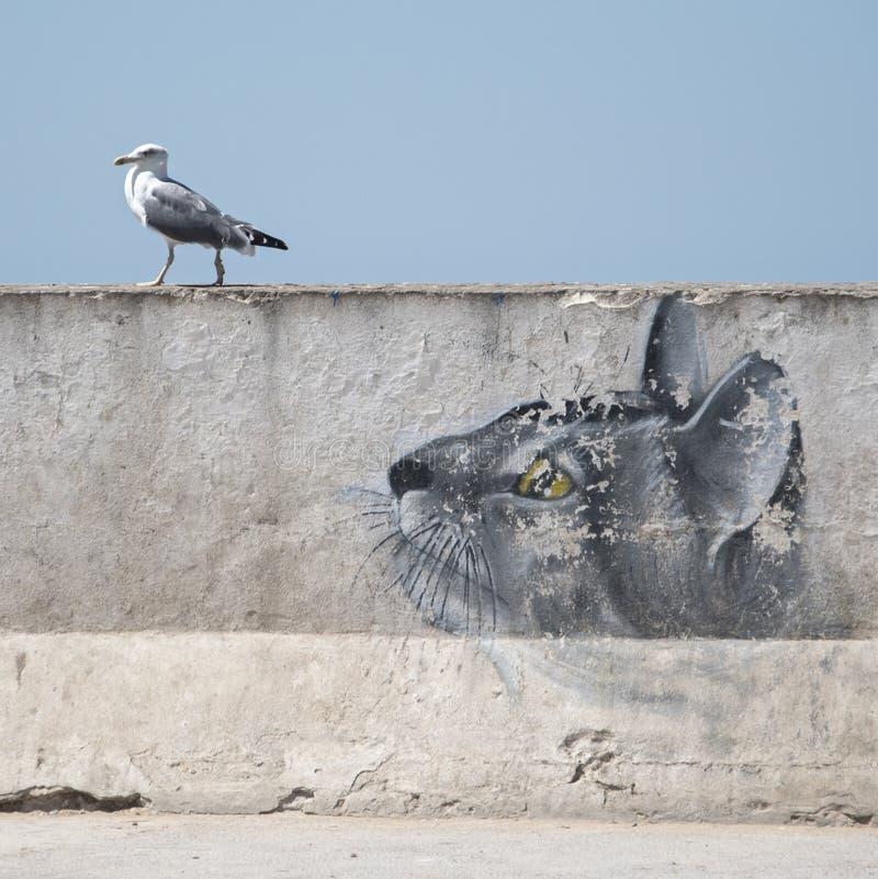 Havsfiskmåsen på hamnväggen hålls ögonen på av 'en katt 'som målas på väggen fotografering för bildbyråer