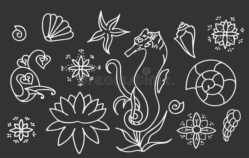 Havshäst, skal och klotterbeståndsdelar Grafisk samling för havsliv Vektorhavvarelser som isoleras på mörker - grå bakgrund vektor illustrationer
