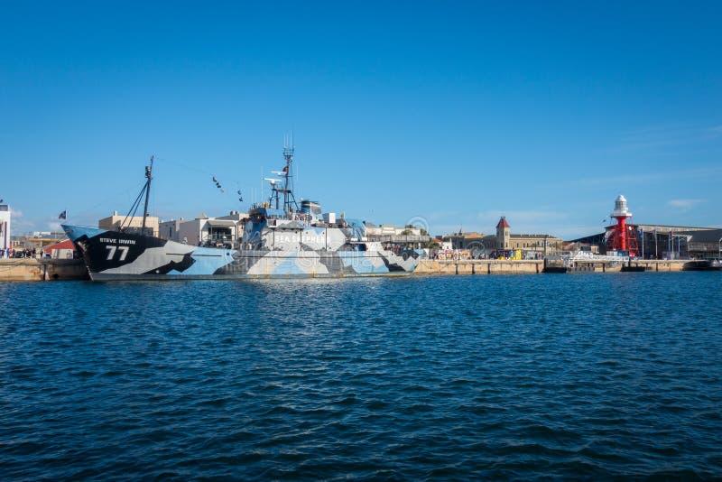Havsherdes Steve Irwin Docked på port Adelaide arkivbild