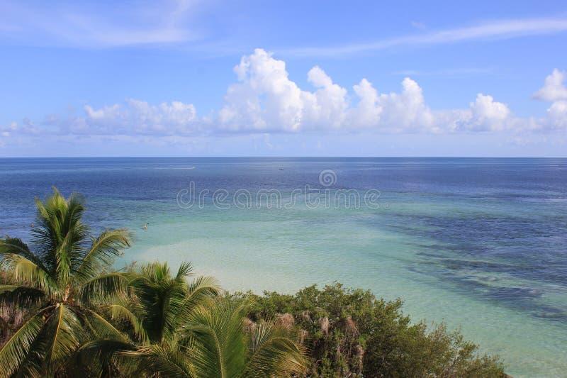 Havsikt i Florida arkivbild