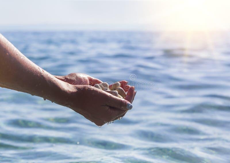 Havskiselstenar i handen arkivfoto