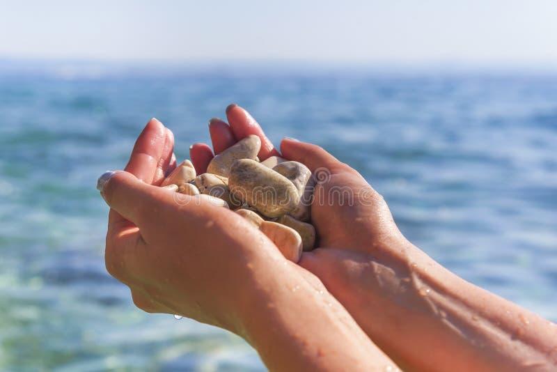 Havskiselstenar i handen fotografering för bildbyråer