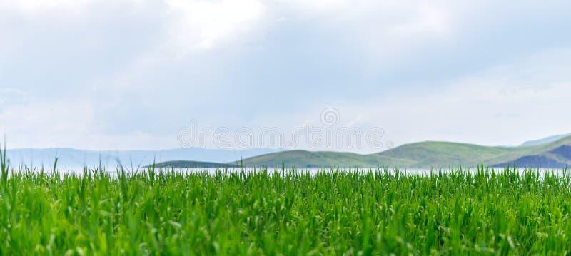 Havslandskap med mountines och rottingar, blå himmel med moln, cloudly utan solen, kazakhstan arkivfoton