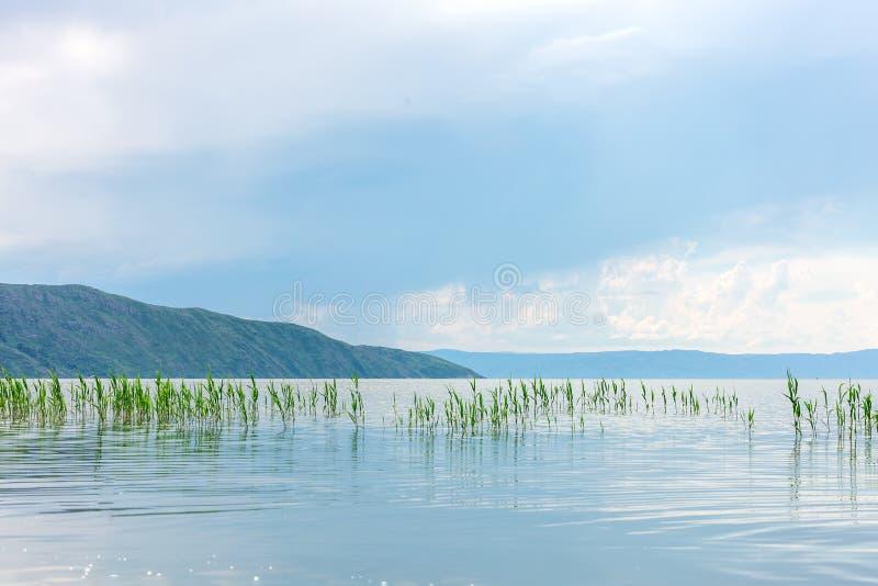 Havslandskap med mountines och rottingar, blå himmel med moln, cloudly utan solen, kazakhstan arkivbilder