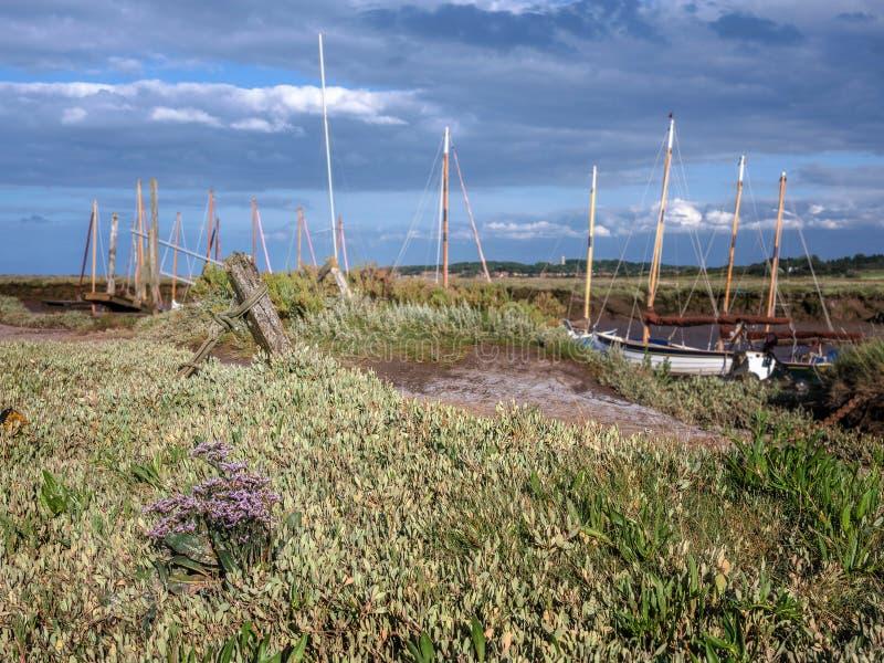 Havslavendel på den Morston kajen Norfolk royaltyfria bilder