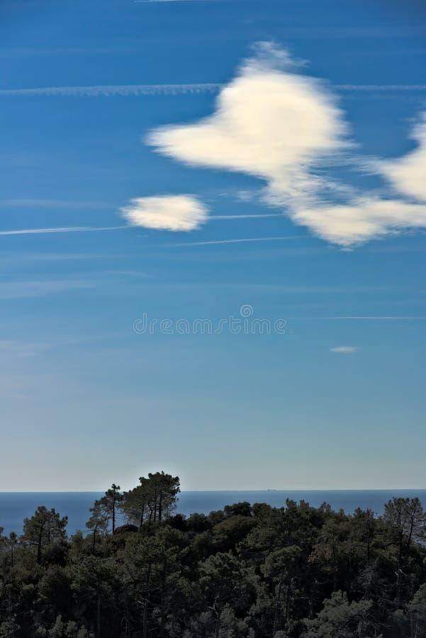 Havspanorama av Cinque Terre Tr?d hav, himmel i en panorama av Cinque Terre Monte grosso Landskap av La Spezia arkivfoton