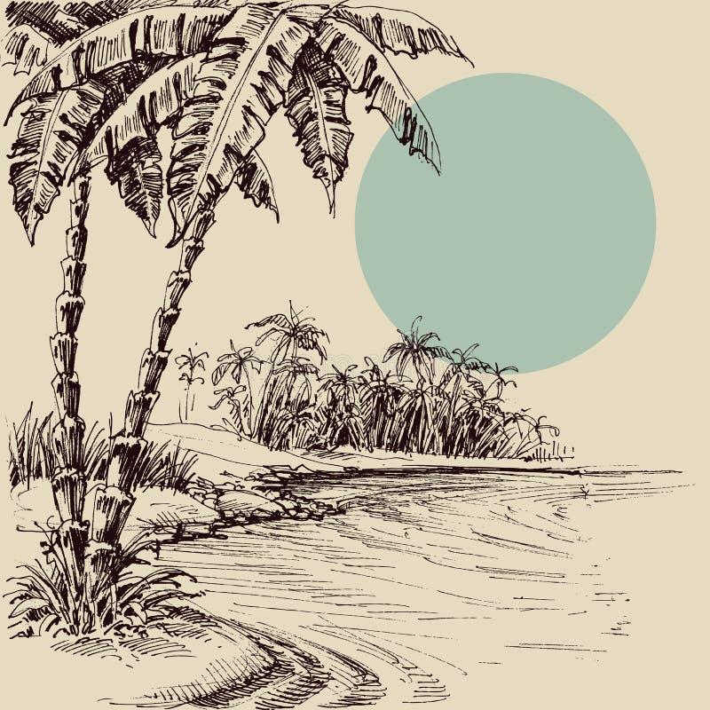Havssikt från den Palm Beach handteckningen vektor illustrationer