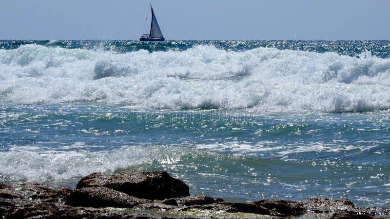 Havssikt i sommar fotografering för bildbyråer