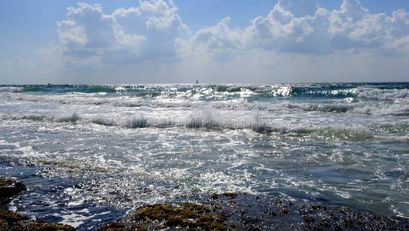 Havssikt i sommar arkivbilder