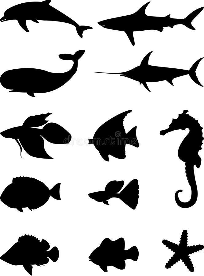 havssilhouettes royaltyfri bild