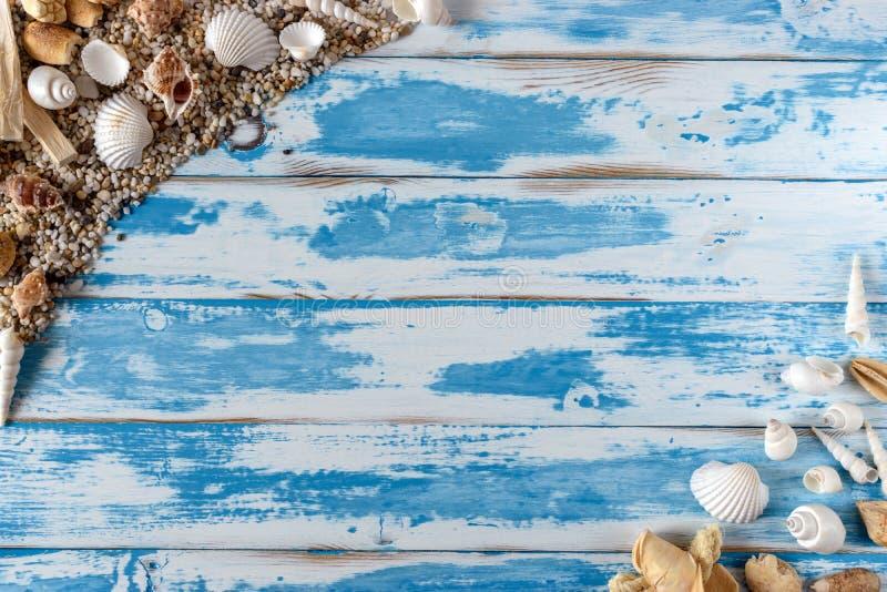 Havsskalram på tappningblåttträbräde royaltyfri foto