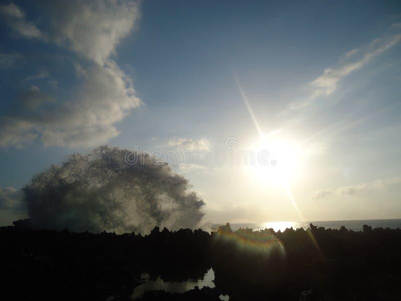 Havsslag som slår koraller i morgon arkivbilder