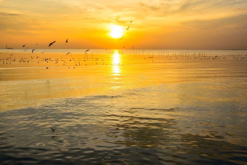 Havssolnedgång 4 fotografering för bildbyråer