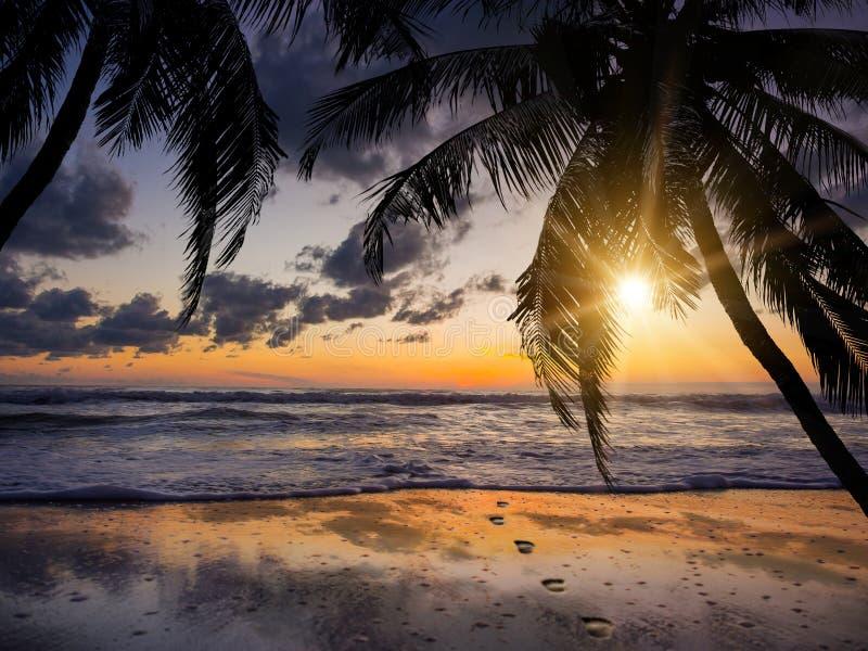 Havssoluppgång i den Koh Samui ön royaltyfria foton