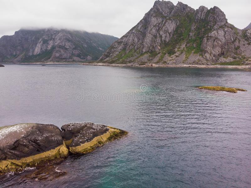Havssten med fåglar, Lofoten öar, Norge royaltyfri fotografi