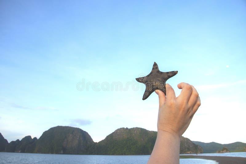 Havsstjärna/stjärnafisk med himlen med handen royaltyfria foton