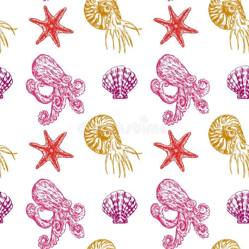 Havsstjärnor, nautilusen, bläckfisken och havet beskjuter stock illustrationer