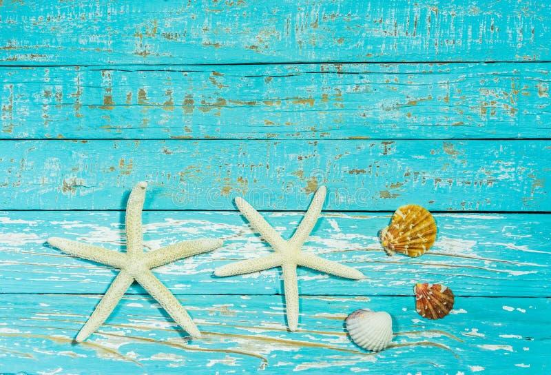 Havsstjärnor och snäckskal på lantligt blått trä, maritim strandsommarplats royaltyfria foton