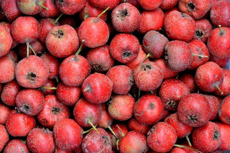 Haw apple