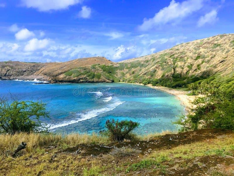 hawaï image stock