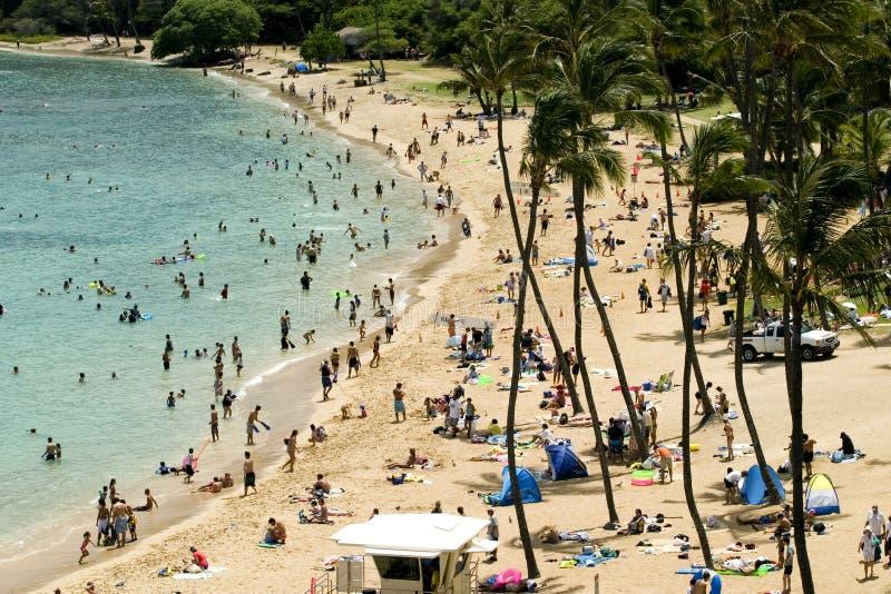 Hawaï royalty-vrije stock foto's