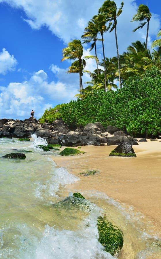 Hawai fotografía de archivo libre de regalías