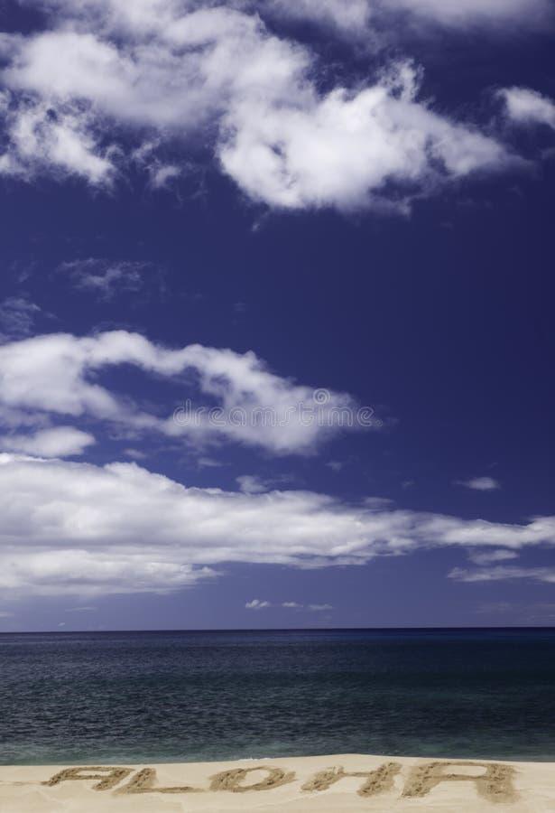 Hawaiana en una playa hawaiana imagenes de archivo