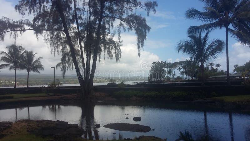 hawaii royaltyfria foton