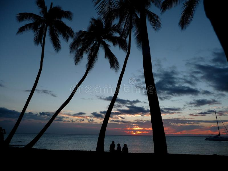 hawaii imagenes de archivo