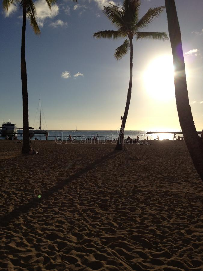 Hawaii Beach In The Sun royalty free stock photo