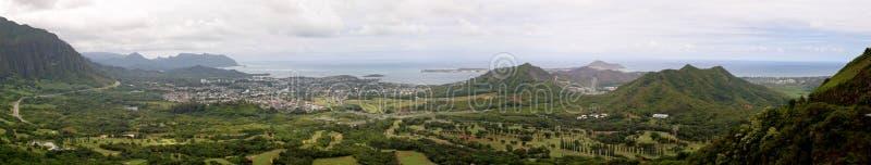 hawaii czujki płonie obraz royalty free