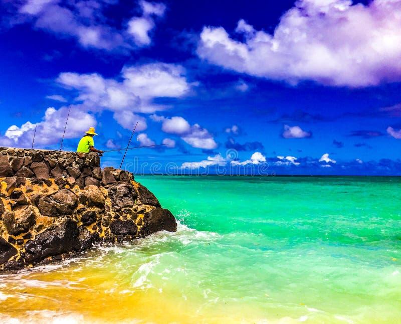 Hawaii Fishing royalty free stock photo