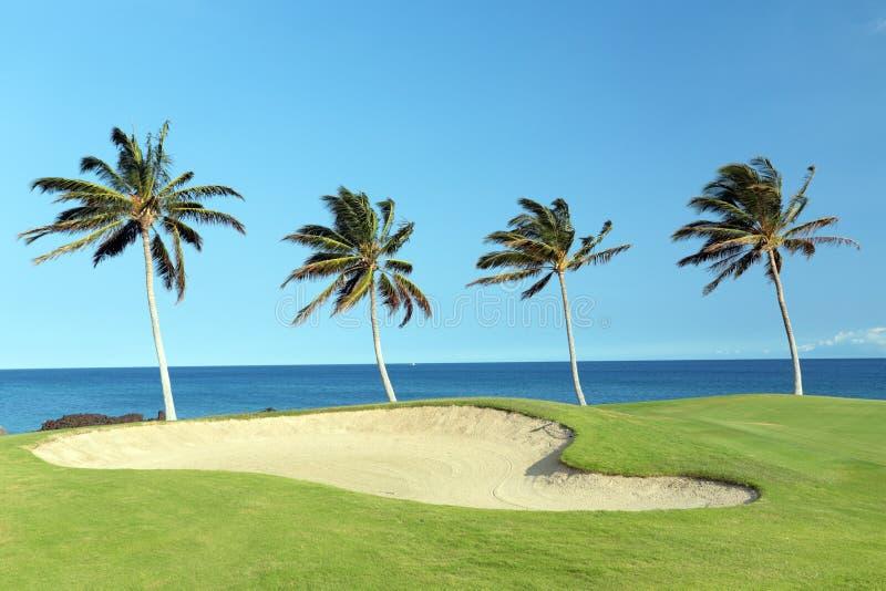 Hawaii Golf Course. Green Hawaiian Golf Course on Lava Ocean Shore of Kona Island stock photos
