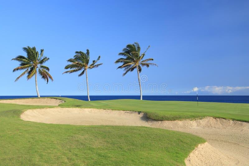 Hawaii-Golfplatz lizenzfreies stockbild