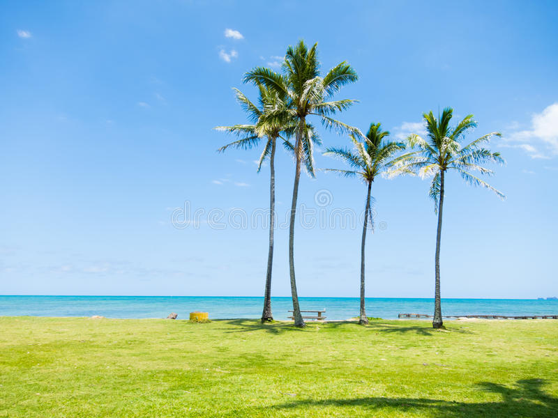 Hawaii. Kualoa Regional Park in Hawaii stock photo