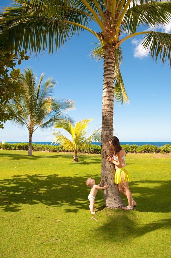 Download Hawaii Oahu obraz stock. Obraz złożonej z wyspa, piechur - 13337587