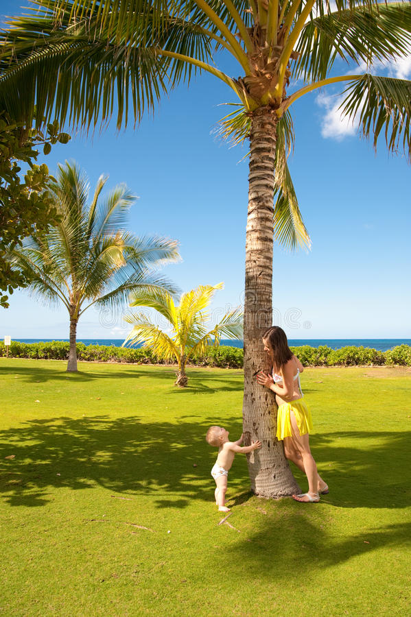 Download Hawaii, Oahu stock photo. Image of baby, island, trip - 13426290