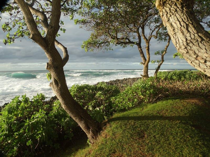 hawaii Oahu obrazy stock