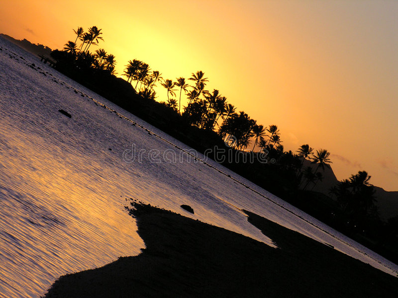 Hawaii Palms And Ocean At Sunset Royalty Free Stock Images