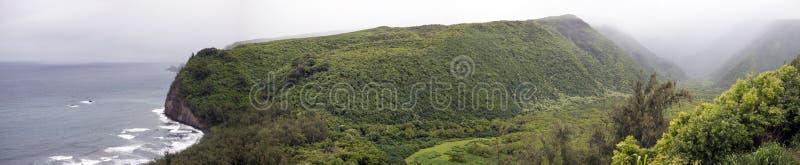 Download Hawaii panorama stock photo. Image of trees, panorama - 38240138