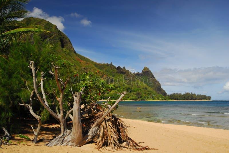 hawaii panorama- sikt royaltyfria foton