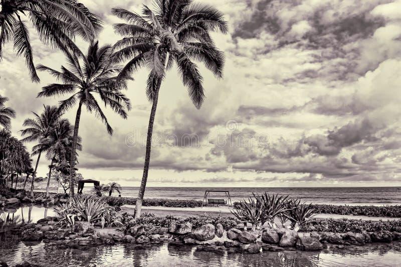 Hawaii Pardise mit Meerblick lizenzfreies stockfoto