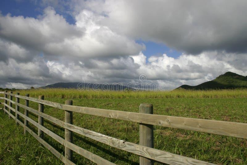 Hawaii ranch stock image