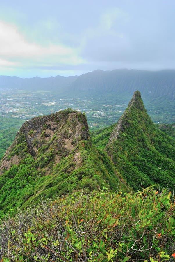 Download Hawaii Ridge Hike stock image. Image of trail, hike, green - 25219977
